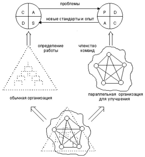 Модель Шибы